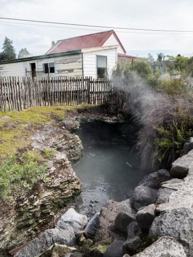 Whakarewarewa Living Maori Village