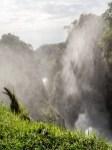 Murchinson Falls National Park-216