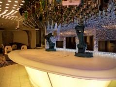 Symphony of the Seas , Bionic Bar