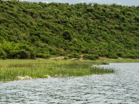 Kazinga Channel; Queen Elizabeth National Park