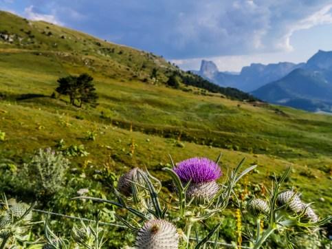 Alpage du Serpaton, Mont-Aiguille