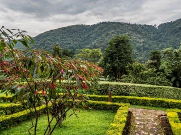 Silverback Lodge, Bwindi