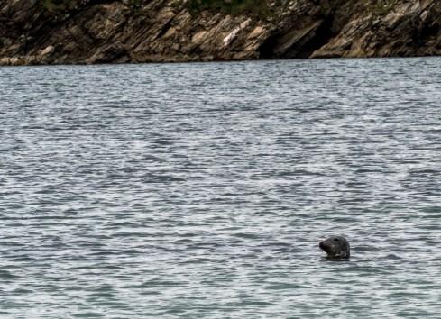 Shetland St Ninian's Isle-15