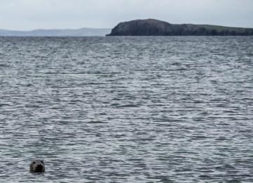Shetland St Ninian's Isle-17
