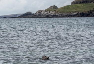 Shetland St Ninian's Isle-18