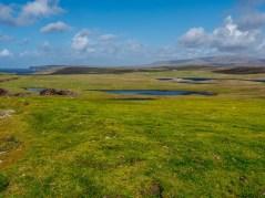 Eshaness Shetland-38