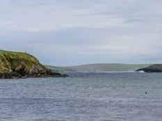Mainland-Shetland-46