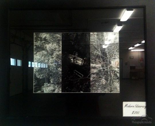 soarts-spring-into-arts-2011--10