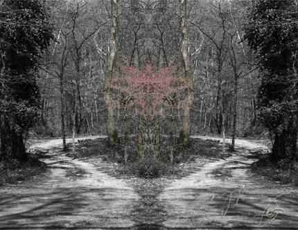 soarts-spring-into-arts-2012-
