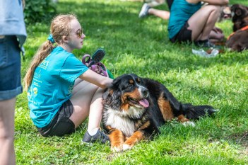 It was a beautiful day and a doggone good time at ARPO's 14th Annual Dog Olympics hosted by Q95's Dean Metcalf in Broad Ripple Park on Saturday, June 1, 2019.