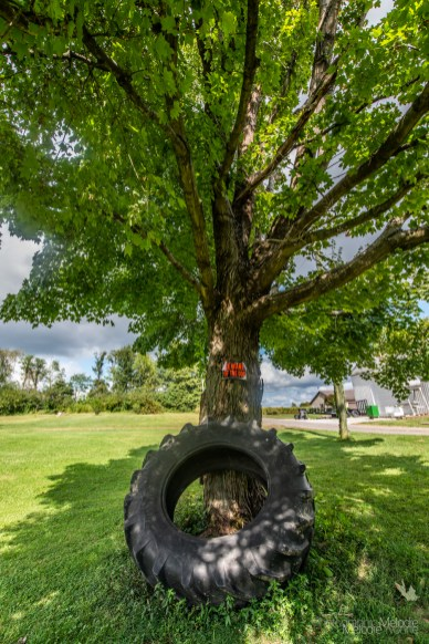 It was a beautiful day visiting Queensville, Indiana to shoot images throughout the area on Saturday, September 7, 2019. Photo cred Melodie Yvonne