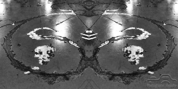 the-harmony-of-symmetry
