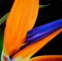 Bright Bird - $150
