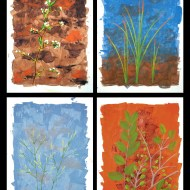 Postcards From Paradise (set of 4) - $300