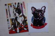 Frenchie postcards - (I have a french bulldog name Darwin)