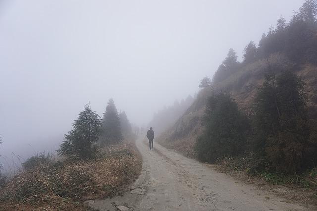 Walk in Woods, Solitude