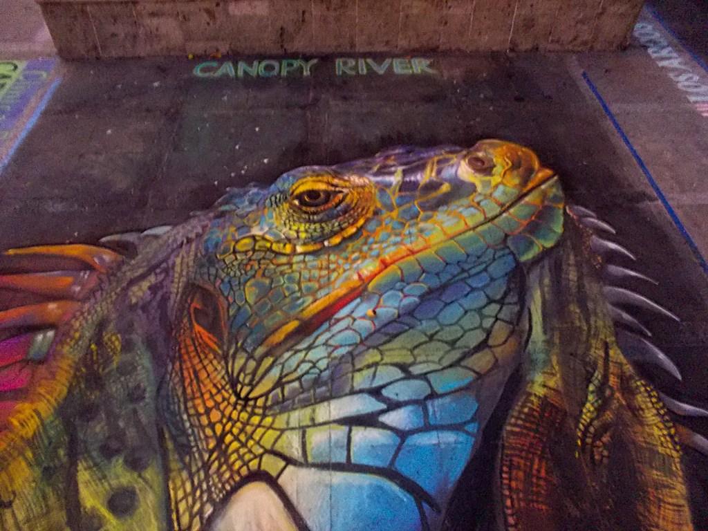 Imadonnari Puerto Vallarta Lizard Mural Project