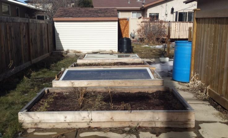 garden2-mar 5
