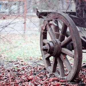 brown wooden wheel on an old cart with fallen leaves around it on the ground.