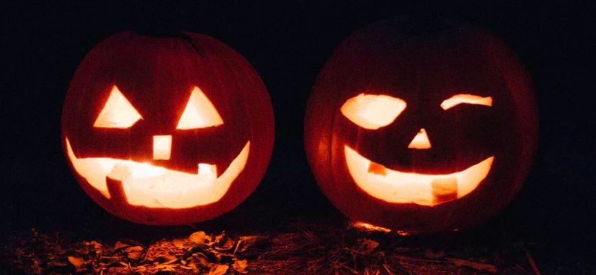 melshire-haloween-pumpkins