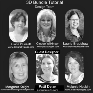 3D Bundle Tutorial Design Team