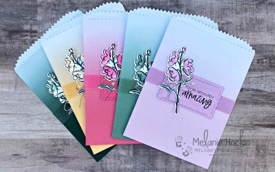 Luv 2 Stamp Annual Catalog Inspiration Blog Hop Ombre Gift Bags