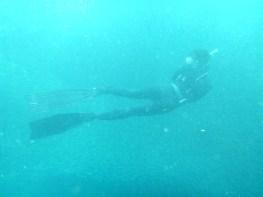 I am a freediver. Sharks beware.