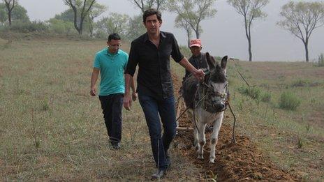 Algunas comunidades rurales son tan pobres que comparten un burro entre todos para las tareas del campo.