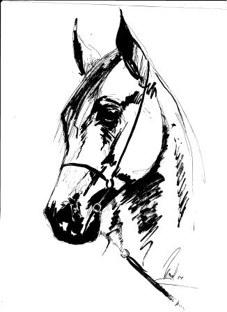 Sketch 2014.Tinta