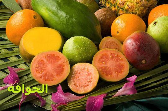 ثمار الجوافة