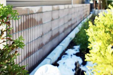 ネオリブ塀札幌