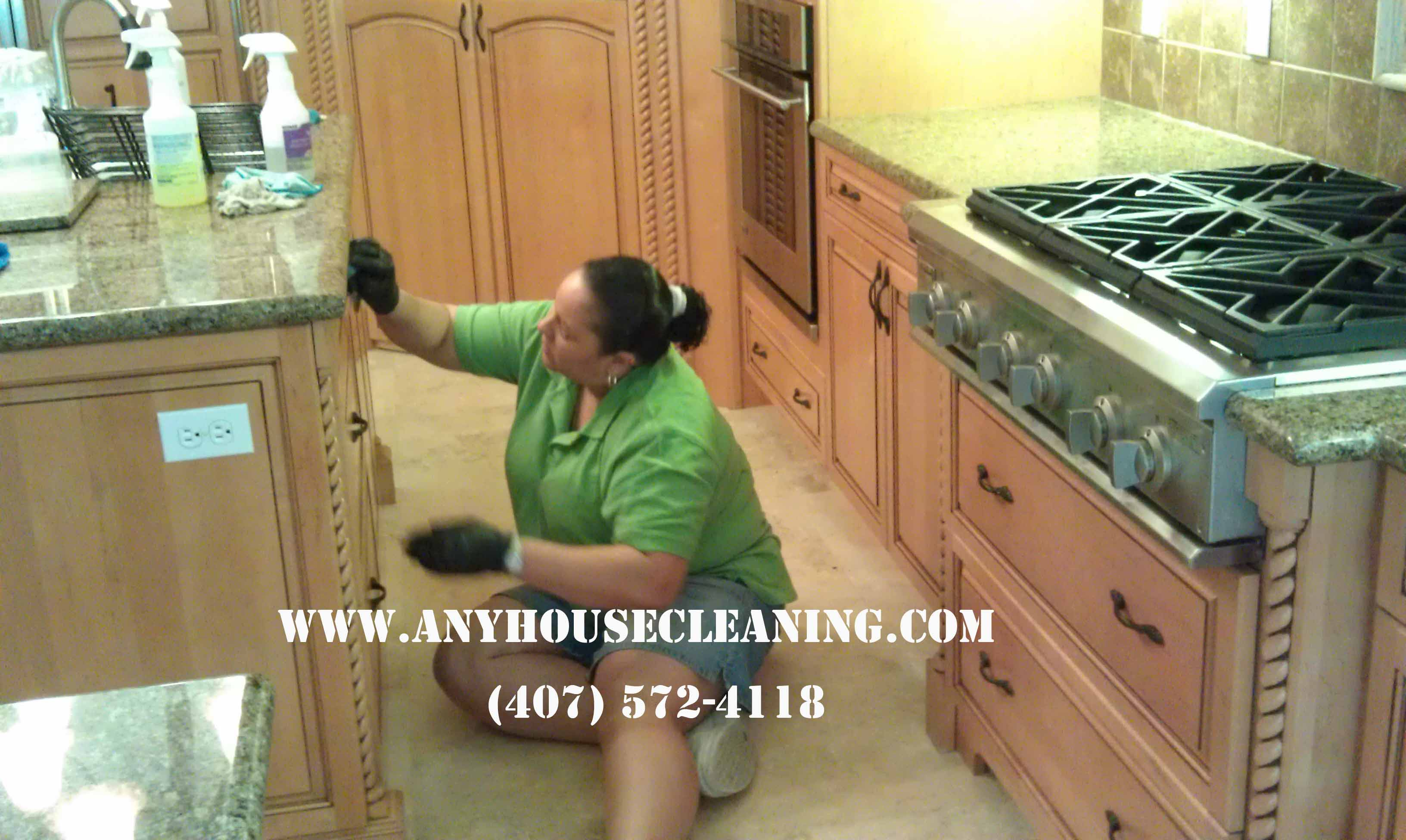 kitchen cleaning services hardware deep 407 572 4118