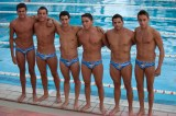 speedoswimteam