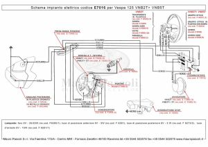 Ds 450 Wiring Diagram  camizu