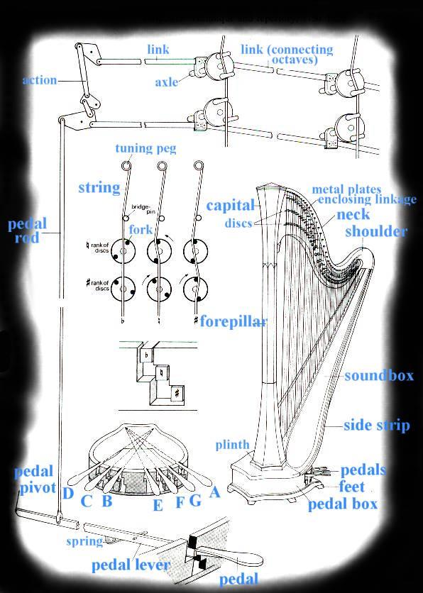 sonata form diagram bt wall socket wiring harp string diagram, harp, free engine image for user manual download