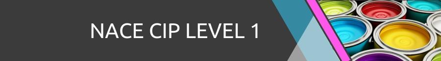 NACA CIP Level 1