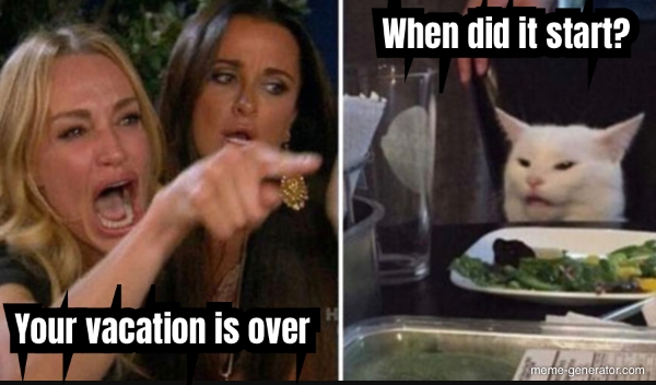 Your Vacation Is Over When Did It Start Meme Generator