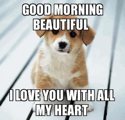 good morning i love you meme for him