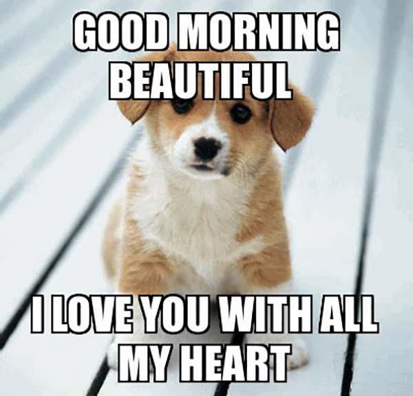 🌅 79 Good Morning Meme To Enjoy Your Day - Meme Central