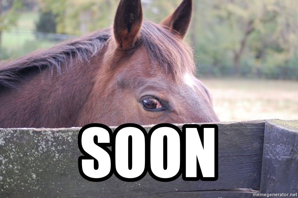 soon soon horse meme
