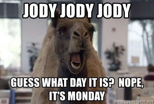 Image result for monday geico camel