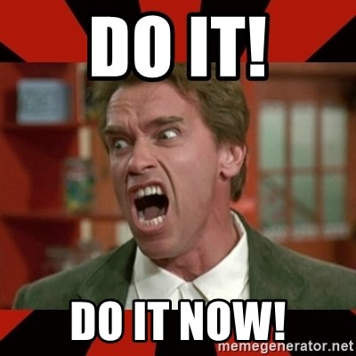 Image result for arnold do it now
