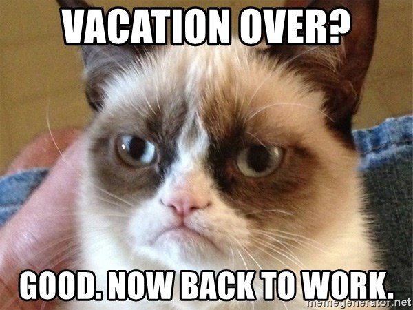 Vacation Over Good Now Back To Work Angry Cat Meme Meme Generator