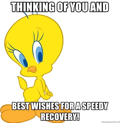 Thinking of you and Best wishes for a speedy recovery! - Tweety Bird | Meme  Generator