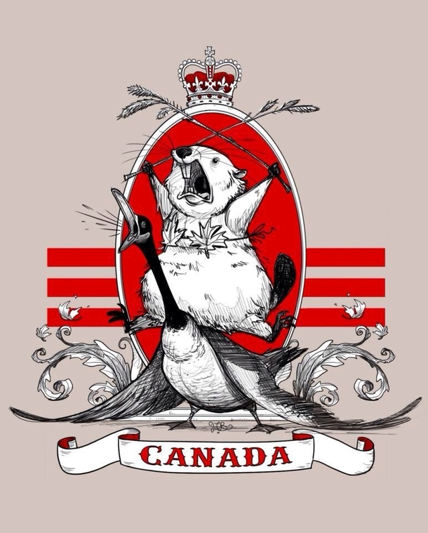 https://i0.wp.com/memeguy.com/photos/images/the-majestic-canadian-beaver-riding-a-goose-while-wearing-a-maple-leaf-bikini-57638.jpg