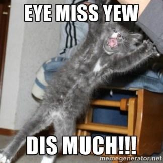 http://cdn.meme.am/instances/40330606.jpg