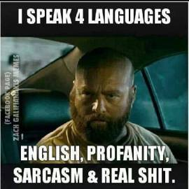 http://www.amusingtime.com/images/021/funny-meme-i-speak-four-languages.jpg
