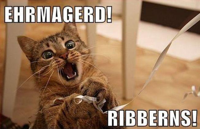 http://petnaturals.com/blog/wp-content/uploads/2013/08/ribbons-cat-meme.jpg
