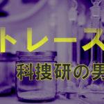 トレース科捜研の男8話で友達の女優役は石井杏奈!役柄や演技力はある?