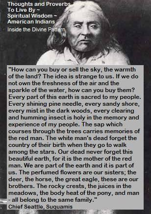 chief seattle address essay